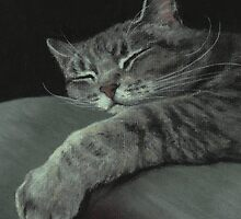 Sleepy Cat on a Pillow by Pam Humbargar