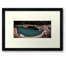 Kermit's Pool Framed Print