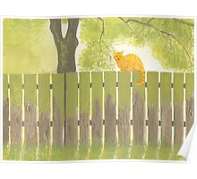 Cat on an Old Fence ~ Watercolor painting Poster