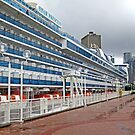 The Cruise Ship by Eileen McVey