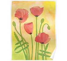 Red Poppies ~ Watercolor Painting Poster
