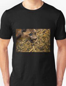 Puma At Amaru Unisex T-Shirt