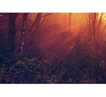 Mists of Heaven Photographic Print