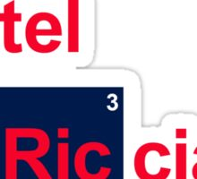 Team Vettel Ricciardo Sticker