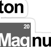 Team Button Magnussen (white T's) Sticker