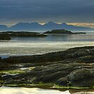 Rum With A Bit Of Eigg by Jamie  Green