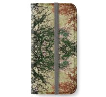 Winter Colors Collage iPhone Wallet/Case/Skin