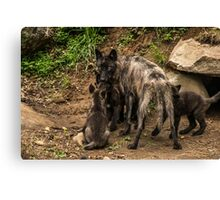 Black Wolf With Pups Canvas Print