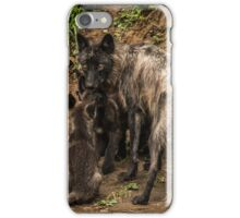 Black Wolf With Pups iPhone Case/Skin