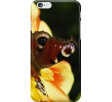 Peacock Butterfly on a Flower iPhone Case/Skin