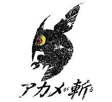 Akame ga Kill!  Distressed Logo Design Photographic Print