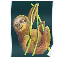 The Sloth Poster