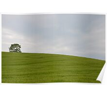 A tree in a field Poster