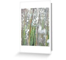 Striking in White - Lavender Greeting Card