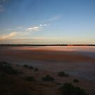 Lake Hart, South Australia by Erland Howden