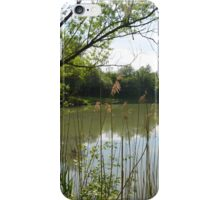 Another angle on a lake iPhone Case/Skin