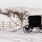 Amish Buggy by Dannyboy2247