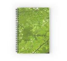 Leaves Above Me Spiral Notebook