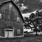 Red Barn and Tree by Roger Passman