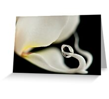 Orchid with water drop balanced  Greeting Card
