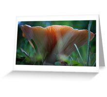 Under the Mushroom Greeting Card