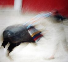 BULLFIGHT  2 by danielgomez