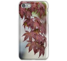 Japanese Maple After Rain iPhone Case/Skin