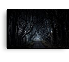 The Dark Hedges, Kingsroad, armoy Canvas Print