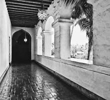 Walking through History  by ProjectSpearman