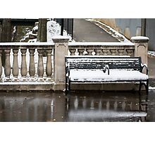 Park Bench In Snow Photographic Print