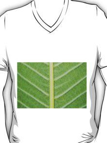 Macro shot of green leaf, nature pattern background T-Shirt