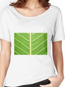 Macro shot of green leaf, nature pattern background Women's Relaxed Fit T-Shirt