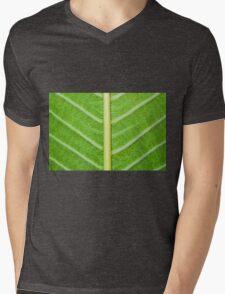 Macro shot of green leaf, nature pattern background Mens V-Neck T-Shirt