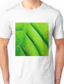 Macro shot of green leaf, nature pattern background Unisex T-Shirt