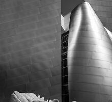 Disney Concert Hall by Radek Hofman