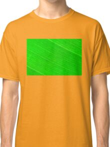 Macro shot of green leaf, nature pattern background Classic T-Shirt