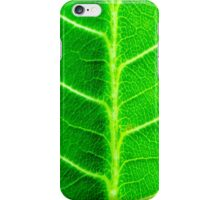 Macro shot of green leaf, nature pattern background iPhone Case/Skin