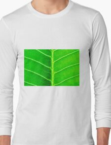 Macro shot of green leaf, nature pattern background Long Sleeve T-Shirt