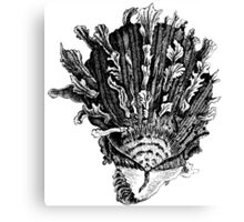 What A Hat!!! Canvas Print