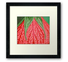 Tropical Flower Green and Coral Framed Print