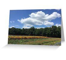 Sky Over Farmc Greeting Card
