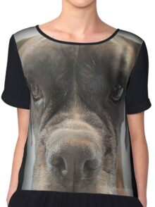 Are There Any Choc Cookies In There? - Boxer Dogs Series Chiffon Top