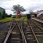 Kawakawa Tracks by lezvee