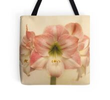Amaryllis Apple Blossom Tote Bag