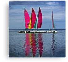 Cat' Voiles Canvas Print