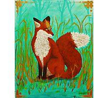 The Fox Photographic Print
