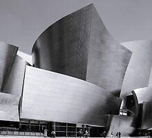 Watl Disney Concert Hall by Radek Hofman