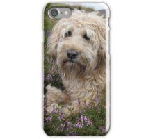 Irish Wheaten Terrier in flowers iPhone Case/Skin