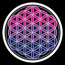bi-sacred geometry by chromatosis