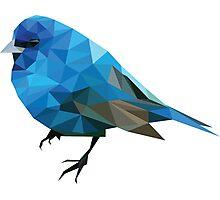 Geometric Blue Bird Photographic Print
